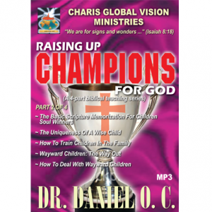 Champions 2 - web - front
